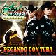 Los Cuates De Sinaloa - Pegando con tuba