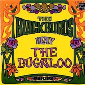 The Blackburds