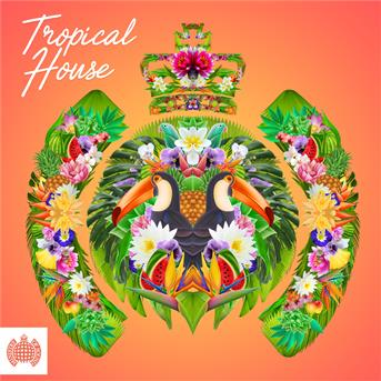 Dimmi tropical house ministry of sound coute for House classics album