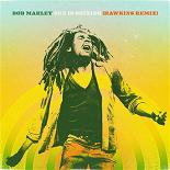 Bob Marley - Sun is shining (hawkins remix)