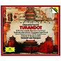 Album Puccini: turandot (2 CD's) de Katia Ricciarelli / Herbert von Karajan / Wiener Philharmoniker / Barbara Hendricks / Ruggero Raimondi...