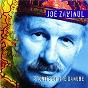Album Zawinul: stories of the danube de Joe Zawinul / Arto Tuncboyaciyan / Czech State Philharmonic Orchestra, Brno / Burhan Öçal / Amit Chatterjee...