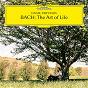 Album J.C. Bach: Sonata No. 5 in A Major, Op. 17, No. 5: I. Allegro de Daniil Trifonov