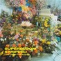 Album SUPERBLOOM (stripped) de Misterwives