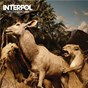 Album Our love to admire de Interpol