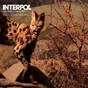 Album The heinrich maneuver (the scientist dub MIX) de Interpol