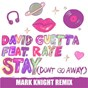Album Stay (don't go away) (feat. raye) de David Guetta