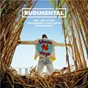 Album These days (feat. jess glynne, macklemore & dan caplen) de Rudimental