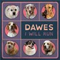 Album I will run de Dawes