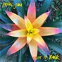 Album Get It Back de Pearl Jam