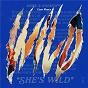 Album She's Wild (Lizot Remix) de Merk & Kremont / Lizot