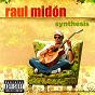 Album Synthesis de Raúl Midón