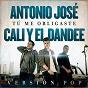 Album Tú me obligaste (versión pop) de Cali Y el Dandee / António José