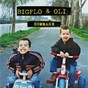 Album Dommage (acoustic) de Bigflo & Oli