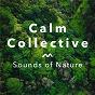 Album Sounds of nature de Calm Collective