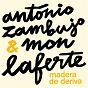 Album Madera de deriva de António Zambujo / Mon Laferte