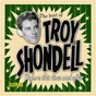 Album Before this time and after: the best of troy shondell de Troy Shondell