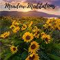Album Meadow meditations de Decidic FX