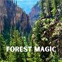 Album Forest Magic de Yoga Tribe