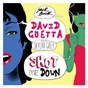 Album Shot me down (feat. skylar grey) de David Guetta