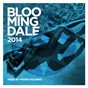 Compilation Bloomingdale 2014 avec Me & Her / Franky Rizardo / Toyboy & Robin / Alex Adams / Compuphonic...