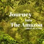 Album Journey into the amazon (original score) de Mikaeli