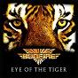 Album Eye of the tiger de Bonfire