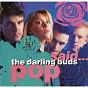 Album Pop said... de The Darling Buds