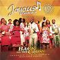 Album Joyous celebration, vol. 19 (back to the cross) de Joyous Celebration