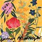 Album C.U.D.I (Can U Dig It) de Cosmo S Midnight