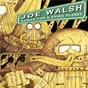 Album Songs for a dying planet de Joe Walsh