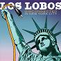 Album Disconnected in new york city (live) de Los Lobos