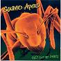 Album Don't give me names de Guano Apes