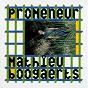 Album Promeneur de Mathieu Boogaerts