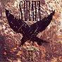 Album When the blackbird sings de Saraya