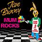 Album Jive bunny mum rocks de Jive Bunny / The Mastermixers
