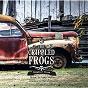 Album Swinder Blues (Opium Factory Remix) de The Crippled Frogs