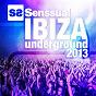 Compilation Senssual ibiza underground 2013 avec Sebastian Ledher / Coxswain / Ivan Hermez / Felix Bothner / Mikel Romero...