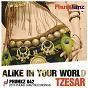 Album Alike in your world de Tzesar
