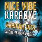 Album Karaoke hits - stone temple pilots (karaoke version) de Nice Vibe