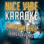 Album Karaoke hits - tears for fears (karaoke version) de Nice Vibe