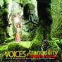Album Voices of tranquility de See New Project