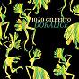 Album Doralice de João Gilberto