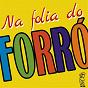 Compilation Na folia do forró, vol. 1 avec Nadia / Banda Palov / Banda Rayally / Marlene Andrade / Banda Mixta...