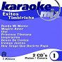 Album Exitos timbiriche (karaoke/cover version) ((karaoke/cover version)) de Karaoke Box