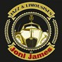 Album Jazz & limousines by joni james de Joni James