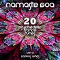 Compilation Namaste goa, vol. 1 (20 psychedelic trance tunes) avec Steven Price / Beloved Groove / Abroad Wagon / Probed Glimpse / Winged Coast...