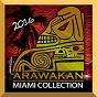 Compilation Arawakan (miami collection 2016) avec DJ Phyzix / Rhythm Staircase / Saliva Commandos / Charo Velecio / Realm of House...