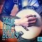 Album True life blues, vol. 1 de The Stanley Brothers