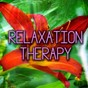 Album Relaxation therapy de Guided Meditation